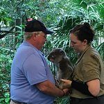 Holding a Koala