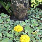 Maire Nui Botanical Gardens의 사진