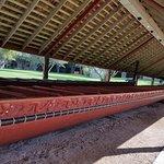 Waitangi Treaty Groundsの写真
