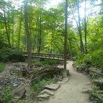 ภาพถ่ายของ The Bruce Trail