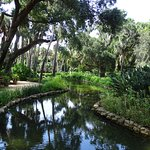 Washington Oaks Gardens State Park照片