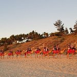 Simply a wonderful experience - a Red Sun Camel Ride on Cable Beach.
