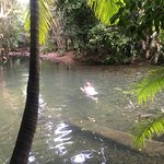 Foto Jungle Tours And Trekking