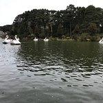 Foto de Lago Negro