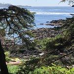 Le long du wild pacific trail