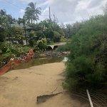 Foto de Hanalei Beach