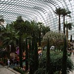 Gardens by the Bay (2)_large.jpg