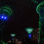 Gardens by the Bay (16)_large.jpg
