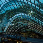 Gardens by the Bay (11)_large.jpg