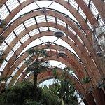 谢菲尔德冬季花园照片