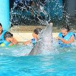Foto van Interactive Aquarium
