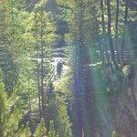 Gola del Rio Plima照片