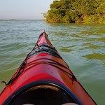 صورة فوتوغرافية لـ Yucatan Outdoors