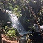 Little Zigzag Falls의 사진