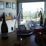 Enjoying samples of wine