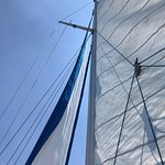 Amores 1 - Boat Tours의 사진