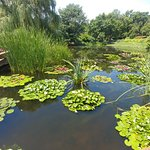 Botanica: The Wichita Gardensの写真