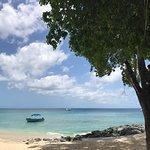Foto de Surfside Restaurant & Beach Bar