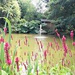 Ballymaloe Gardens Photo