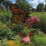 Lego Sculpture, monarch butterfly on milkweed
