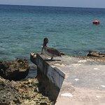 Playa Corona/Corona Beach Club照片