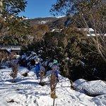 Photo of Thredbo Alpine Village