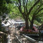 Dhowa Rock Temple Foto
