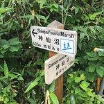 Shinsennuma resmi