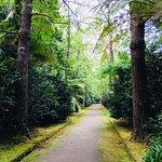 Walk through botanical garden in Furnas