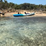 Iguana Island @ Chalk Sound