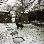 Snow in the Secret Garden.
