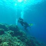 Foto Diving Il Nostromo