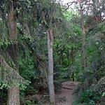 Photo of Nationaal Park Utrechtse Heuvelrug