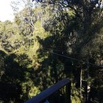 Photo of Tsitsikamma Canopy Tours
