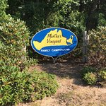 Martha's Vineyard Family Campground Image