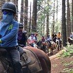 Wonderful ride through beautiful Yosemite trails