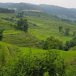 Yuanyang Rice Terraces Foto