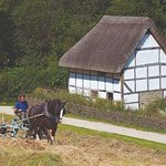 Visit our collection of rescued rural buildings and watch traditional rural demonstrations