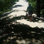 Warren Dunes State Park照片