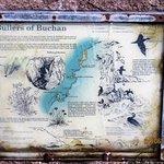 Bullers of Buchan