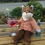The Snooty Fox照片