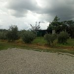 Photo of Agriturismo Bacca Blu