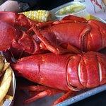 Yankee Lobster Fish Market resmi