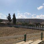 Φωτογραφία: Riding Academy of Crete - Ippikos Riding Club