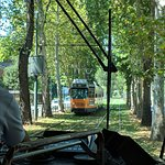 Nearby tram ride to the San Siro Stadium. Green and really rather beautiful
