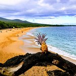 Explore maui island with Maui Fantastic Tours