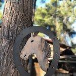 Foto de Bat Ya'ar Ranch