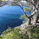 Foto de Presqu'île de Giens