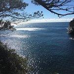 Presqu'île de Giens Picture