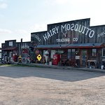 The Hairy Mosquito Trading Company
